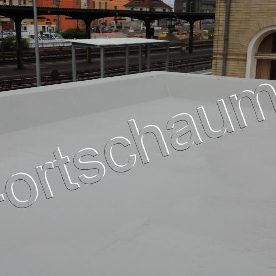 Hasselmann-1-1024x1024